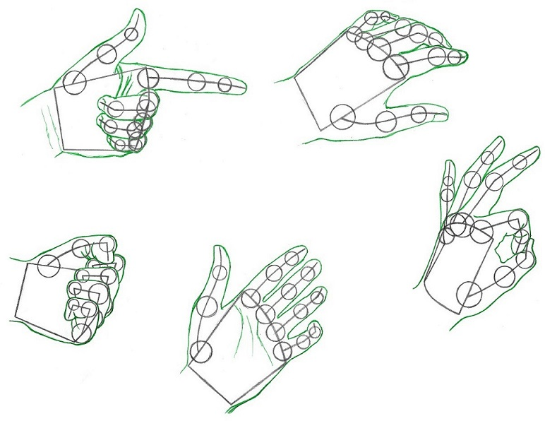 Drawing realistic hands example gestures